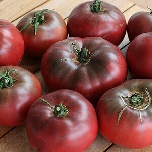 Tennessee Urban Farm | Tomato, Cherokee Purple, Heirloom
