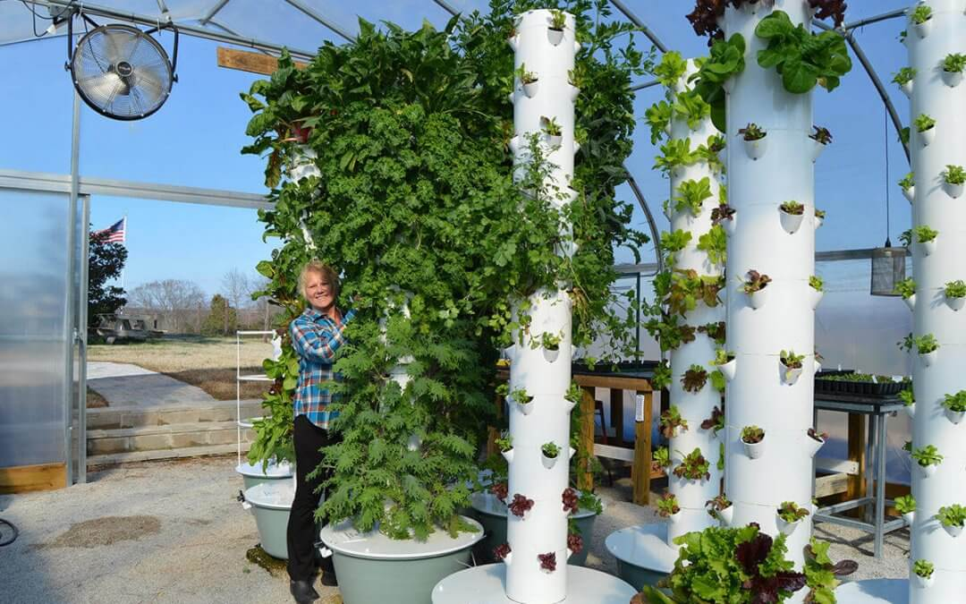 Tennessee Urban Farm | Mona Hitch with her Tower Gardens