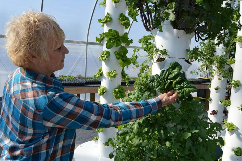 Tennessee Urban Farm | Mona Hitch tends to one of the Tower Gardens