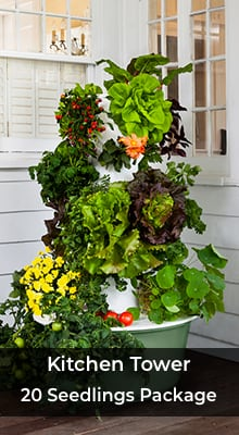 Kitchen Tower 20 Seedlings Package | Tennessee Urban Farm